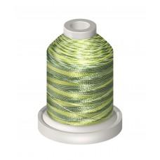 2045 Variegated Mini Spool (1000M)